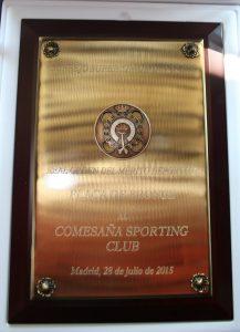 foto placa de bronce 2015